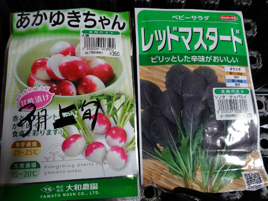 新しい野菜のカタログ写真です。